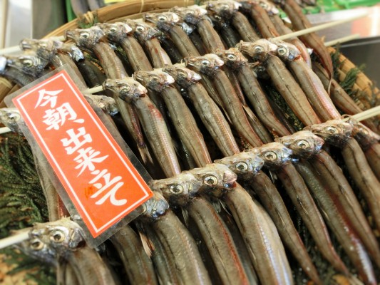 今朝出来立ての「沖ぎす(めぎす)の一夜干し」今の時期は脂が乗っていてオススメの干物の一つです。