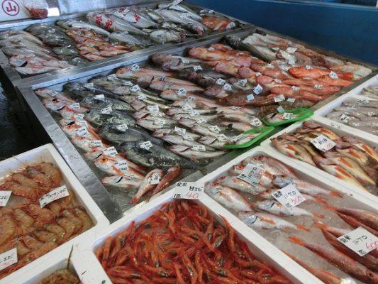 魚陳列2s