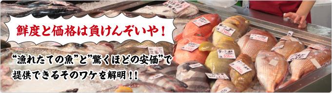 """鮮度と価格は負けんぞいや!""""漁れたての魚""""と""""驚くほどの安価""""で提供できるそのワケを解明!!"""