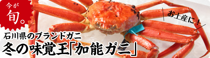 今が旬!石川県沖で上がる絶品お土産!加能ガニ