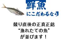 """鮮魚にこだわるなら 競り直後の正真正銘 """"漁れたての魚""""が並びます!"""